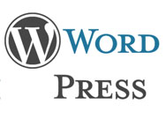 Small Business WordPress Web Site and Blog Coach